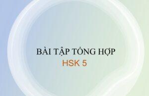 Bài tập tổng hợp HSK 5